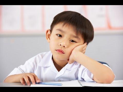 How To Help Kids Focus On Homework - Susan Stiffelman, MFT