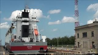 Ship Thamesborg Lowered At Lock 7, Welland Canal