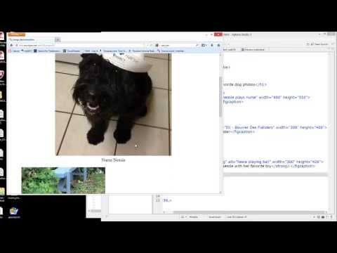 Web Fundamentals: HTML project 2 - images