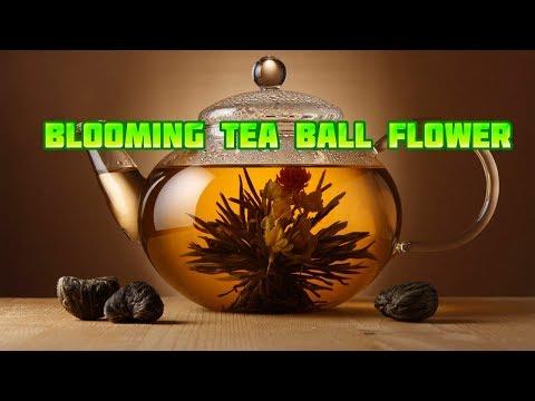 Blooming tea ball flower