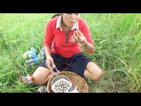 Cooking Trip Food 2017 | Awesome Girls Cooking Delicious Food at Rice Fields In Cambodia | Part 3