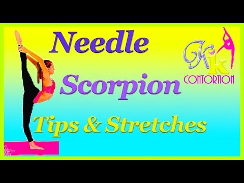 How to do a Needle Straight Scorpion