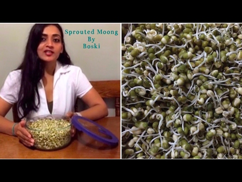 How to sprout Moong Beans and why you should eat and who should avoid eating RAW Sprout Moong Beans