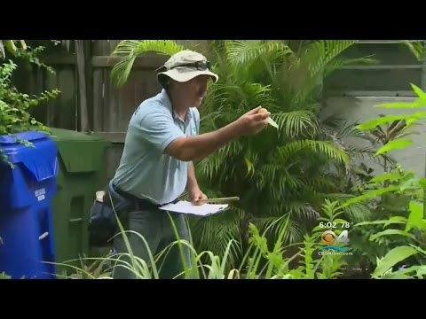 Miami Beach Residents Concerned Over Standing Water
