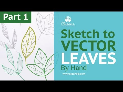 How to turn a sketch into a vector in Adobe Illustrator. How to draw vector leaves tutorial.