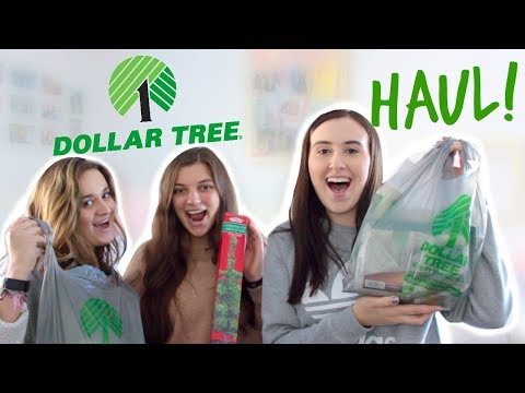 DOLLAR TREE HAUL! & MEET MY HOUSEMATES :)