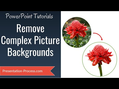 PowerPoint Remove Picture Background : Effect Series