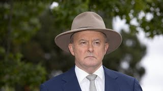 Anthony Albanese is 'all about socialism'