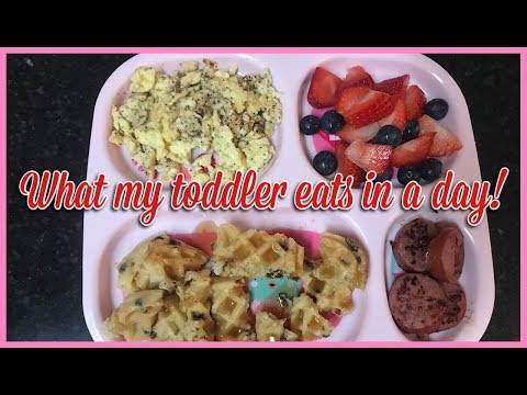 What My Toddler Eats for Breakfast, Lunch, & Dinner! (UPDATED)