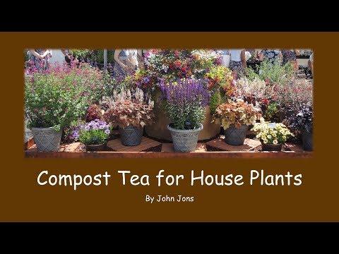 Compost Tea for House Plants