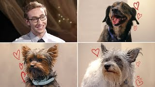 Which of These Dogs Will Win a Date For Their Owner?