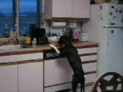 How to stop counter surfing