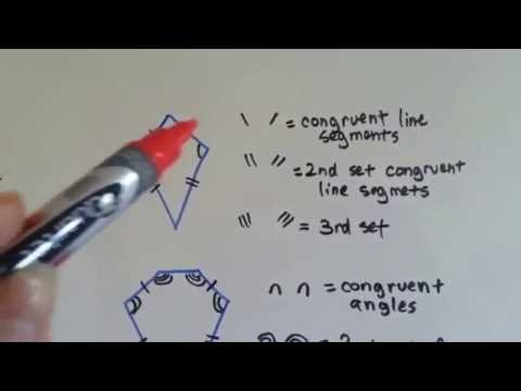 Grade 5 Math #11.1, Identify Polygons and Congruent parts