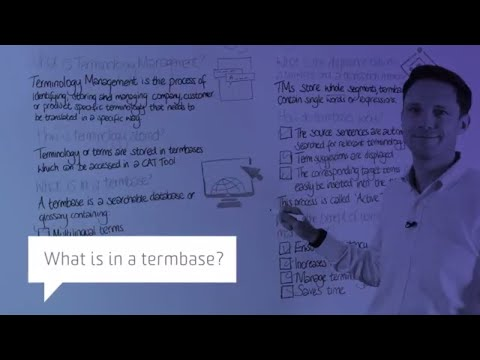 What is in a termbase?
