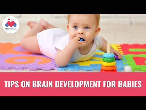 How Baby Brain Develops
