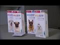 Dog owners blame popular flea medicine for pets's deaths