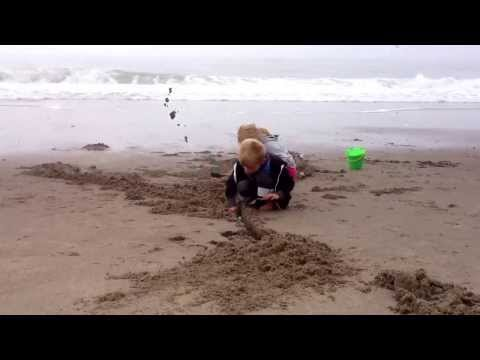 Digging for clams. Summer 2013
