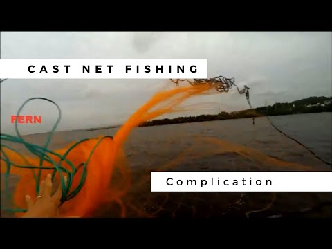 Cast net fishing best complication slow motion