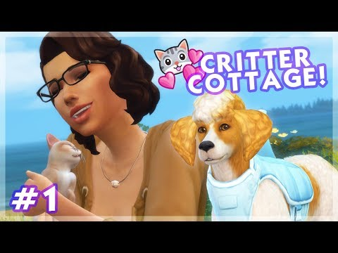 A Home For Strays! | The Sims 4 Cats & Dogs • Critter Cottage - Episode 1