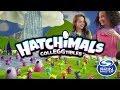 Spin Master | Hatchimals Colleggtibles!