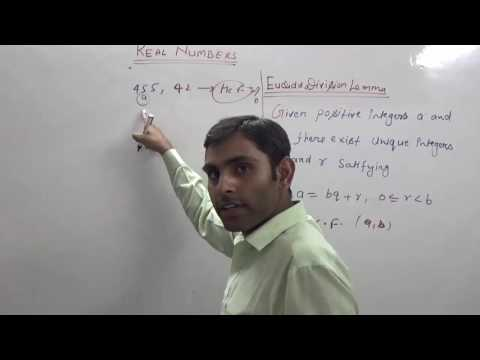 Euclid's Division Lemma (Hindi) | HCF of Two Numbers | NCERT 10th Class Maths