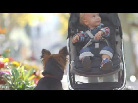 Britax commercial  Be free
