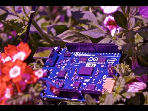 Arduino 101 vs Sunny Day - one last test...
