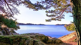 Nature Footage Norway - Woods Mountains and Sea