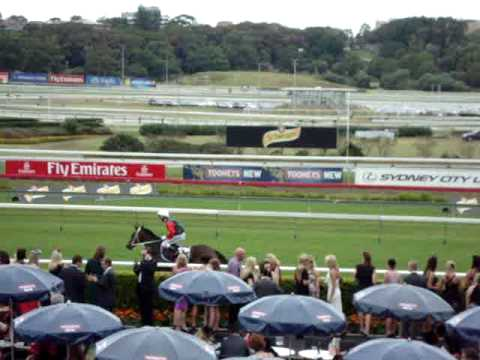 Royal Randwick Horse Race Sydney