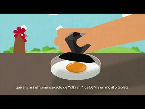 Digital Yolk Fan - Medición del color de la yema del huevo en la era digital