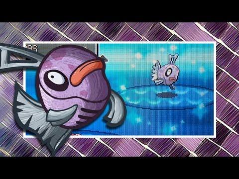{ISHC/SSC #3} [LIVE] Shiny Feebas in Pokemon Platinum After 12701 FEs! + Evolution