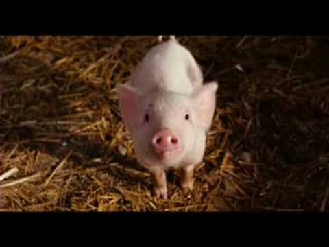 sarah Mclachlan ordinary miracle from  charlotte's web ost