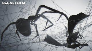 Loom | Animated short film by Jan Bitzer, Ilija Brunck, Csaba Letay (2010)