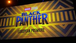 Black Panther stars at European Premiere in London