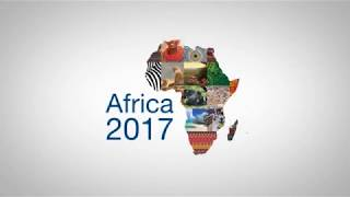 Role of young entrepreneurs in Africa