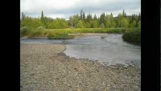 рыбалка в парке югыд ва