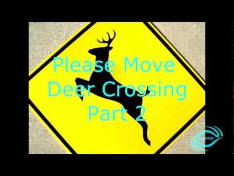 Please Move Deer Crossing Part 2!!!