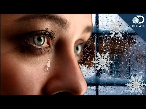 Why You're Sad In The Winter