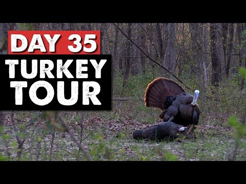 Missouri Gobbler HUNT, CLEAN, AND COOK!  - Turkey Tour Day 35