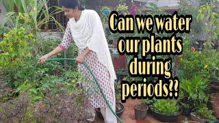 Summer Watering Tips/పీరియడ్స్ అప్పుడు మొక్కల్ని ముట్టుకోవచ్చా?నీరు పోయొచ్చా? #wateringTips #plants