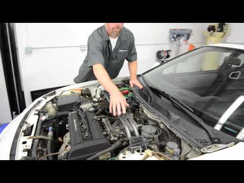 Strut Bars - Presented by Andy's Auto Sport