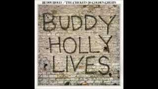 Buddy Holly - Sheila