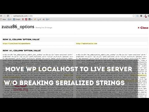 WordPress Move Localhost to Server without Breaking Serialized Strings