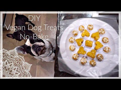 DIY Peanut Butter Yams and Oats Vegan Dog Treats No-Bake