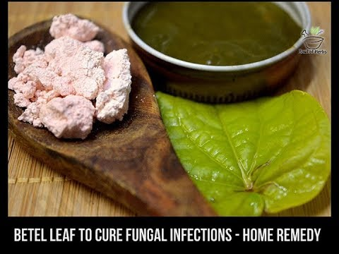 Betel paste to cure nail infections (Paronychia) - Natural remedy