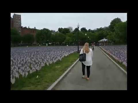 Boston Common Flag Garden Display - Memorial Day - Military Heroes