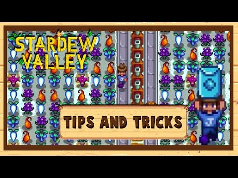 How to make 250K+ in Winter | Stardew Valley | +Uma