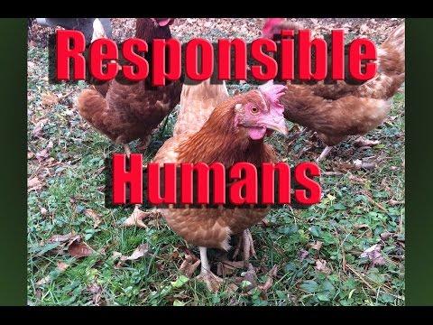 Responsible Humans