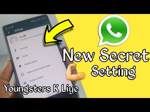 WhatsApp Secret Setting for All WhatsApp User's Easy to Use