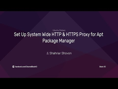 Configure System Wide HTTP & HTTPS Proxy for APT Package Manager